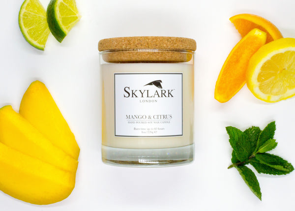 Skylark Candles, Hand poured Soy Candle - Mango & Citrus