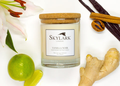 Vanilla Noir by Skylark Candles