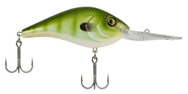 Berkley Dredger | 20.5 | Green Gil
