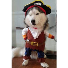 Cat and Dog Pirate Costume