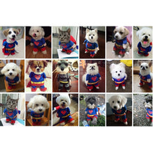 Small Pet Superman Costume