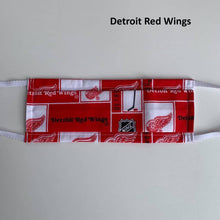 Face Mask, NHL, Detroit Red Wings