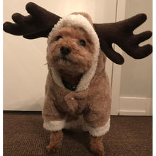 Reindeer Dog Costume - XS to XL