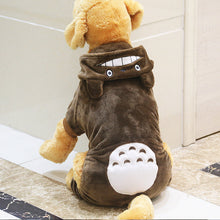 Large Dog Totoro Plush Outfit 2XL - 9XL