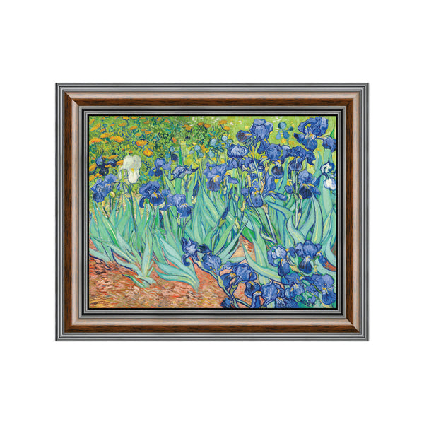Irises by Vincent Van Gogh Framed Wall Art Print, Excellent for Bedroom or Living Room Wall Decor, 11x14, 2445