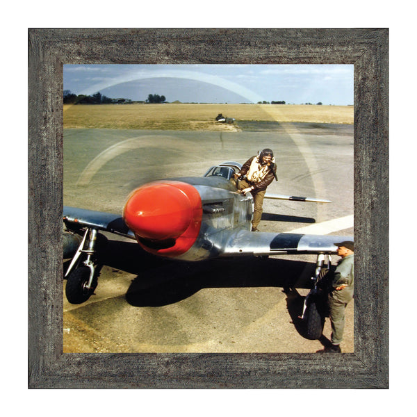 P-51 Mustang Plane, Aviation Picture Frame, 10x10 8513