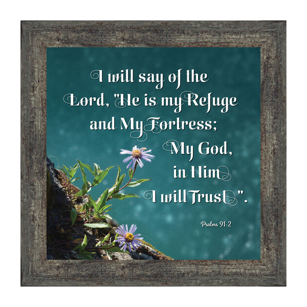 In Him I Trust, Psalm 91 Scripture, Christian Picture Frame, 10x10 8623