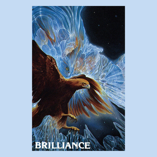 William Wichman | Brilliance (New)