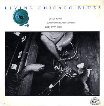 Detroit Junior | Living Chicago Blues Volume 6