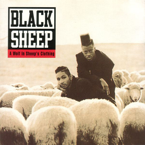 Black Sheep | A Wolf In Sheep's Clothing (New)