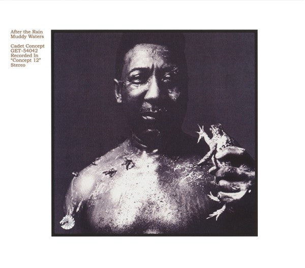 Muddy Waters | After The Rain (New)