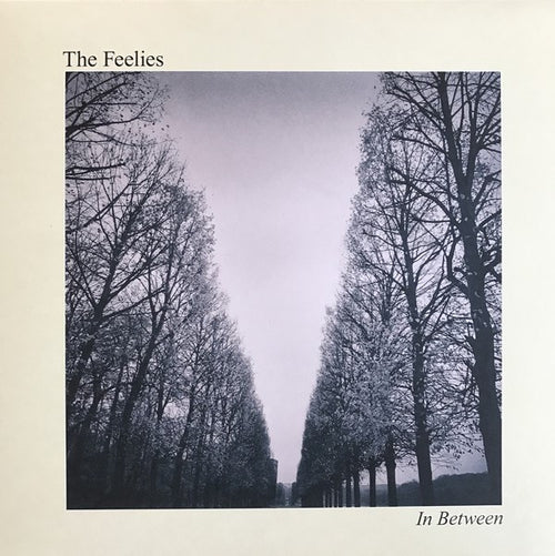 The Feelies | In Between  (New)
