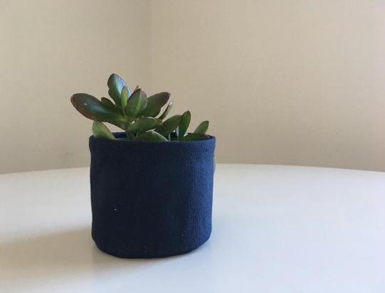 "4"" Canvas Sitting Planter"