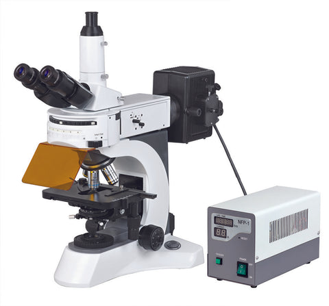 BUM500FL Epi-Fluorescence Upright Microscope (Best Seller Upright Fluorescence Microscope)