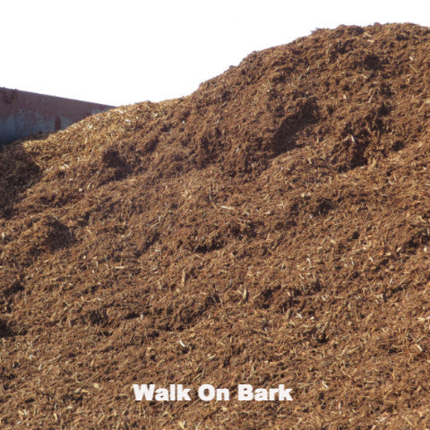 Bark- Walk On