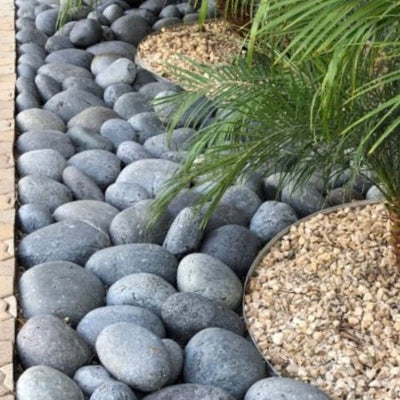 "6""-10""  Mexican Pebbles -Black 80373"