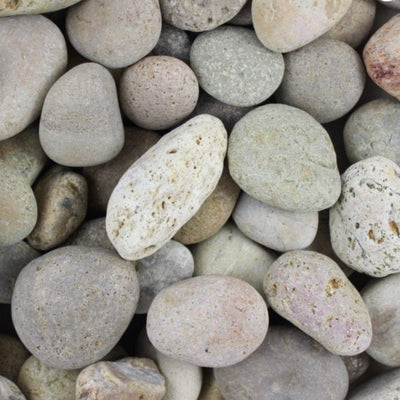 "1""-2""  Mexican Pebbles -Buff 80183"