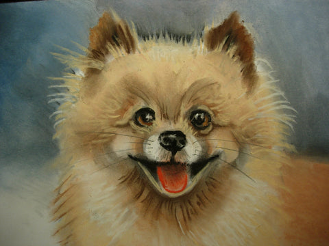 Pastel Pet Portrait - PetPortraits.com