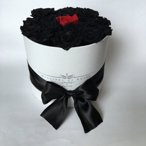 Milliers Small Round Box - White - Black, Red PRESERVADAS