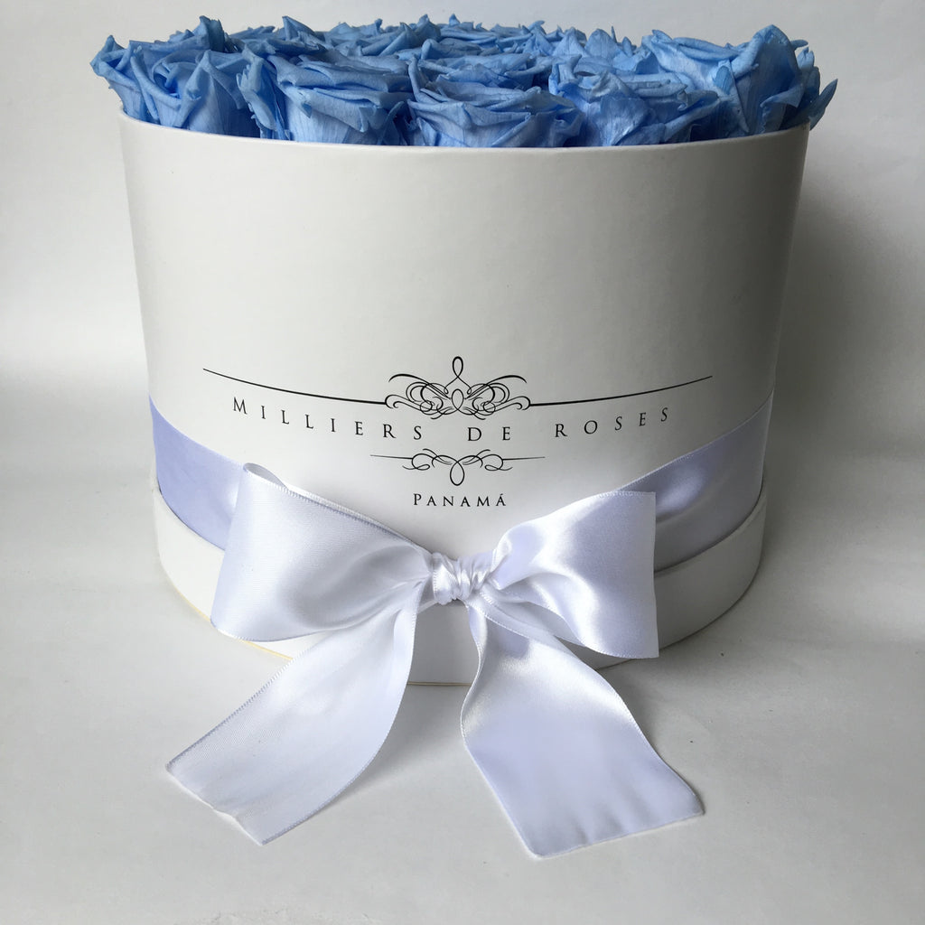 Milliers Large Round Box - White - Baby Blue PRESERVADAS