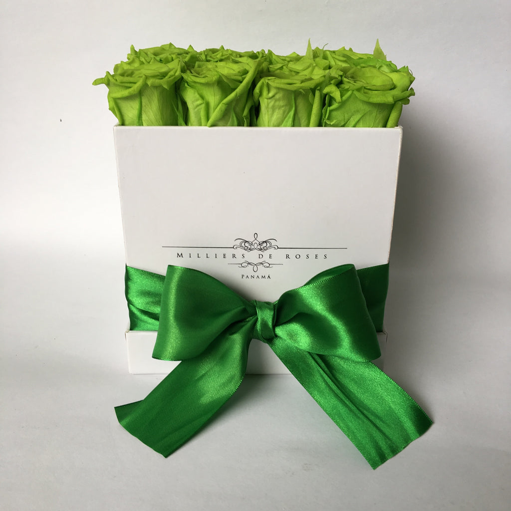 Milliers Square Box - White - Green PRESERVADAS