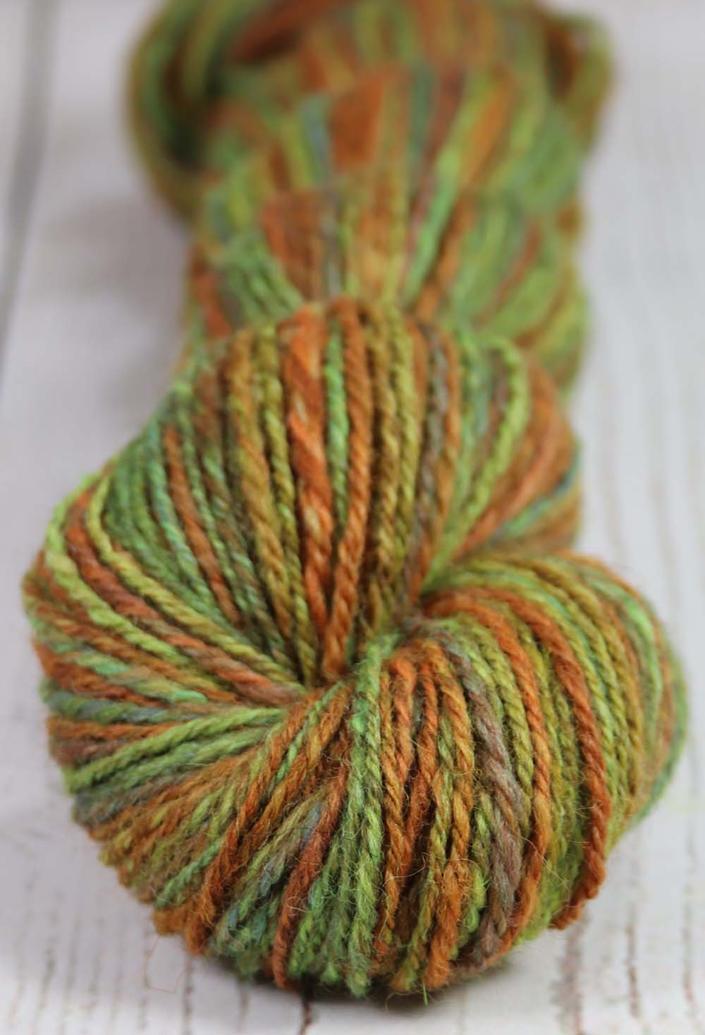 THE COLORFUL MR. G - Hand dyed, hand spun DK yarn