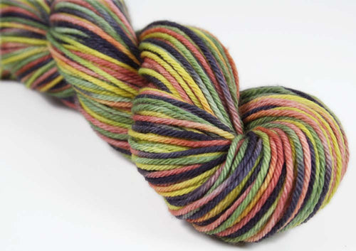 VENETIAN LAUNDRY: Superwash Merino - Worsted Weight - Hand dyed variegated yarn
