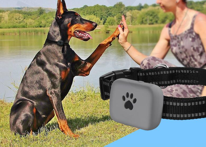 A21P Waterproof Pet Mini GPS Tracker