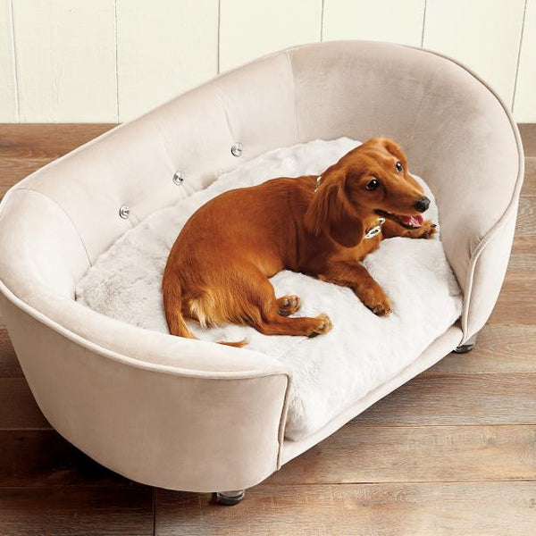best dog beds for