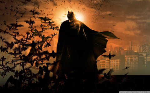 Batman : The Dark Knight