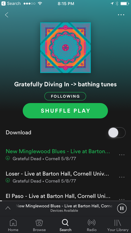 Bathing Culture music to shower to