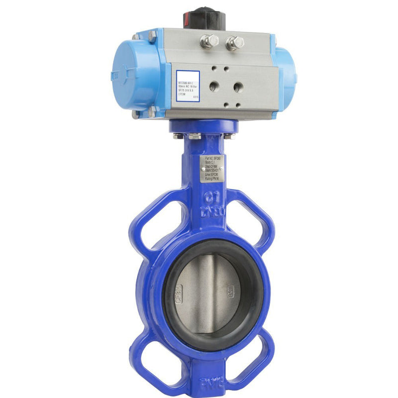 EPDM Liner CI Butterfly Valve 4 In Lug