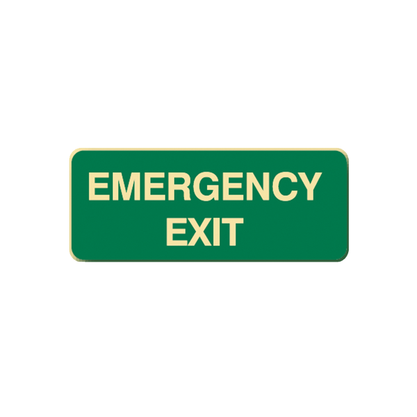 Brady Glow in the Dark and Standard Floor Sign Emergency Exit
