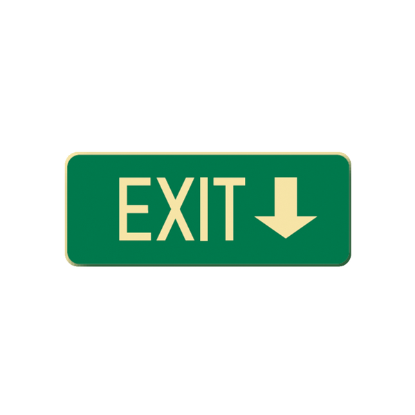 Brady Glow in the Dark and Standard Floor Sign Exit with Down Pointing Arrow