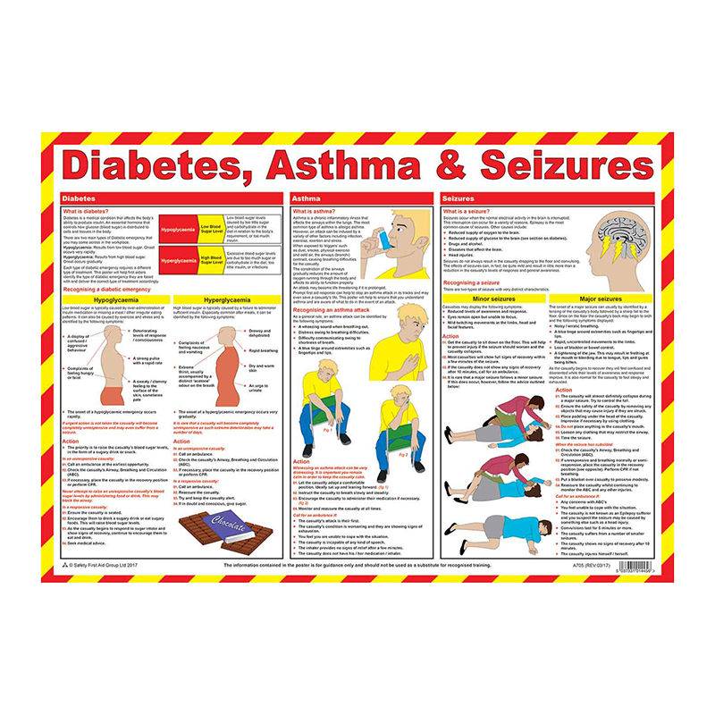 Brady Workplace Safety Poster Diabetes Asthma and Seizures 851924