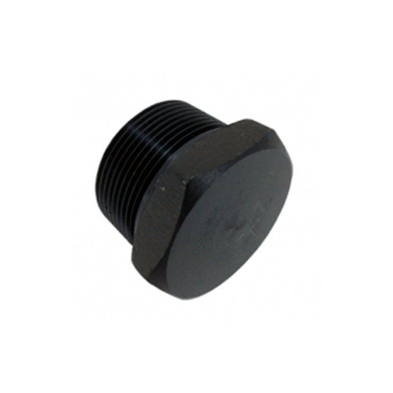 GO Black Steel Hex Head Plug Range Scr BSP BS EN 10241