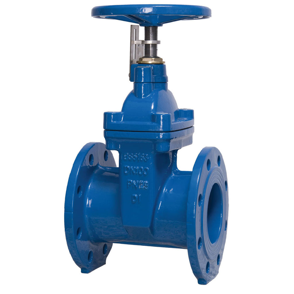 GO Cast Iron Gate Valve Non Rising Stem Solid Wedge Disc Table E Range