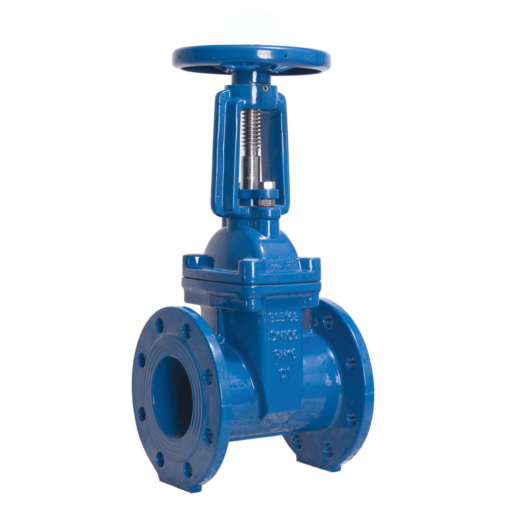 GO Cast Iron Gate Valve Rising Stem Solid Wedge Disc Table E Range