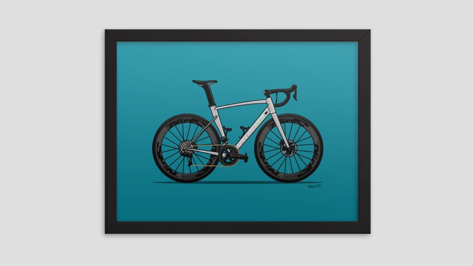 Framed finished bicycle art