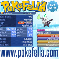 Totem Marowak Rock Head Thick Club Flare Blitz Shadow Ball Bonemerang Swords Dance Battle-ready Competitive Perfect 6IVs Non-shiny buy for sale