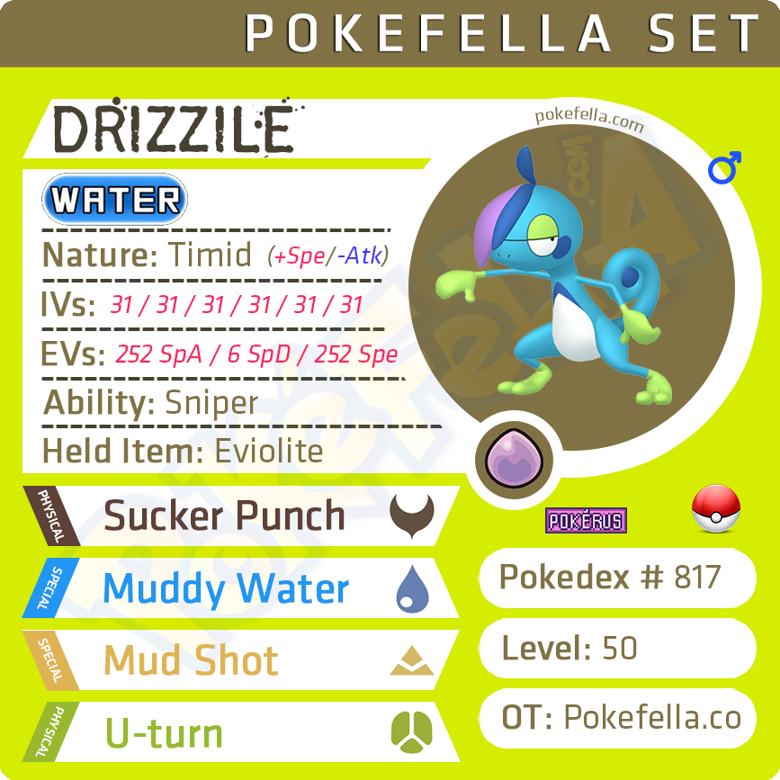 Drizzile Competitive 6ivs Level 50 Online Battle Ready Pokefella Pokemon Genning Editing Trading Services