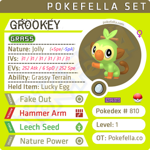 ultra square shiny Galar Starters - Grookey • Competitive • 6IVs • Level 1 • Hidden Ability • Egg Moves