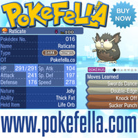 Totem Raticate Thick Fat Life Orb Swords Dance Double-edge Knock Off Sucker Punch Battle-ready Competitive Perfect 6IVs Non-shiny buy for sale