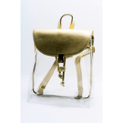 India gold metallic clear drawstring backpack