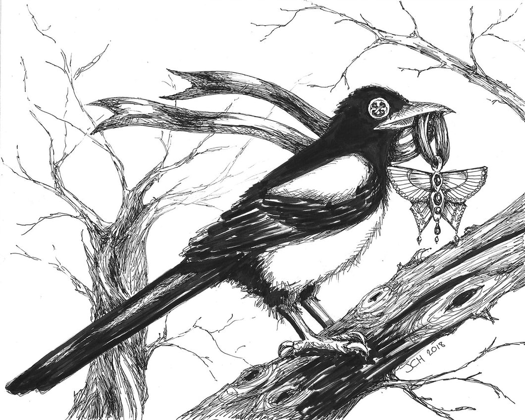 The Collector - button eyed magpie illustration by Jo Hards