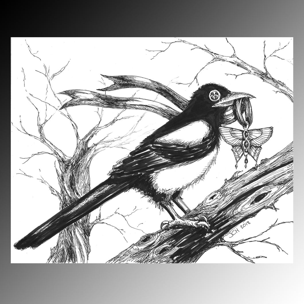 The collector - button eyed magpie illustration in ink, by vegan artist Jo Hards