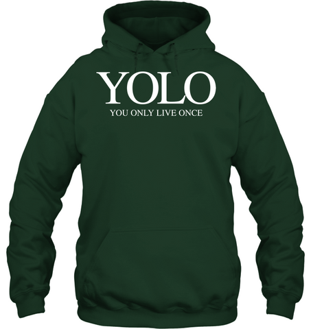 Image of YOLO you only live once rap - Shirts