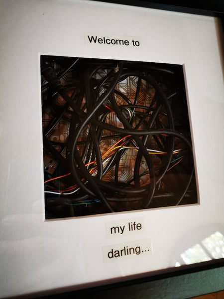 Life - Welcome Darling