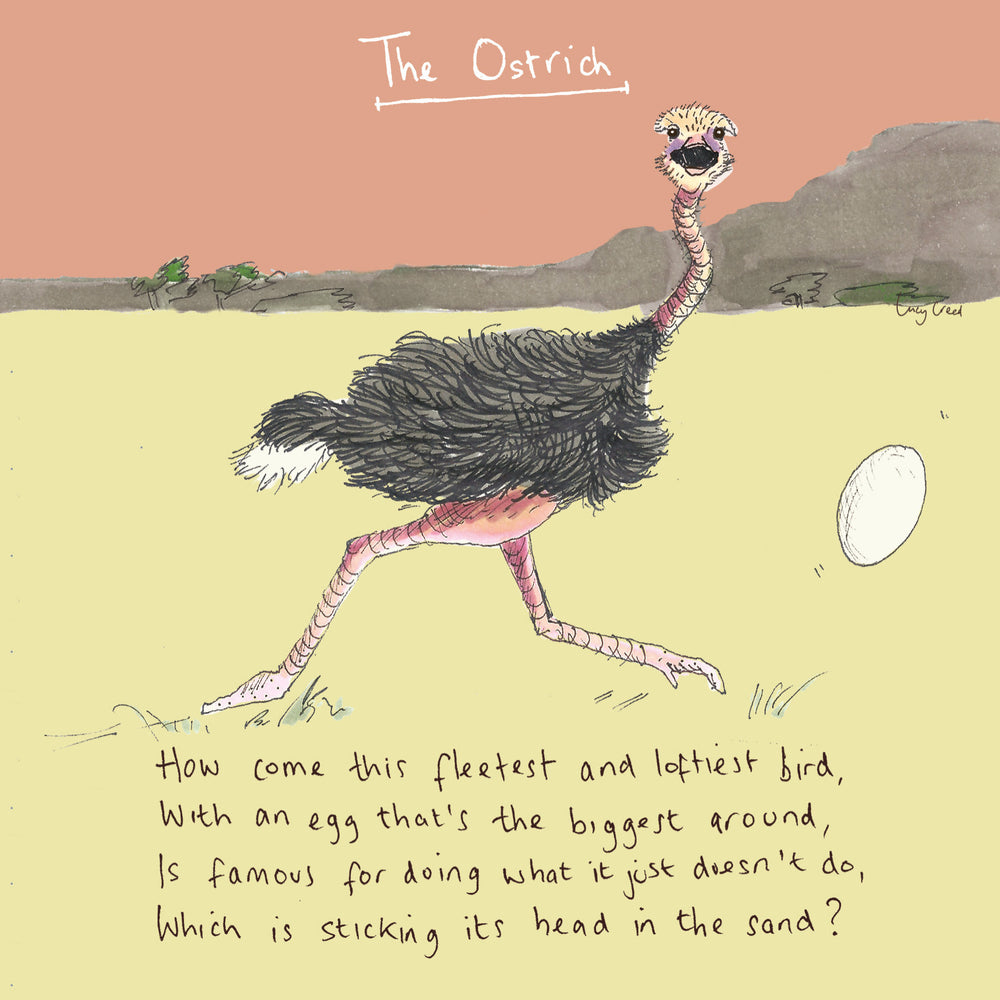 Load image into Gallery viewer, Ostrich FP17Poet & PainterCards