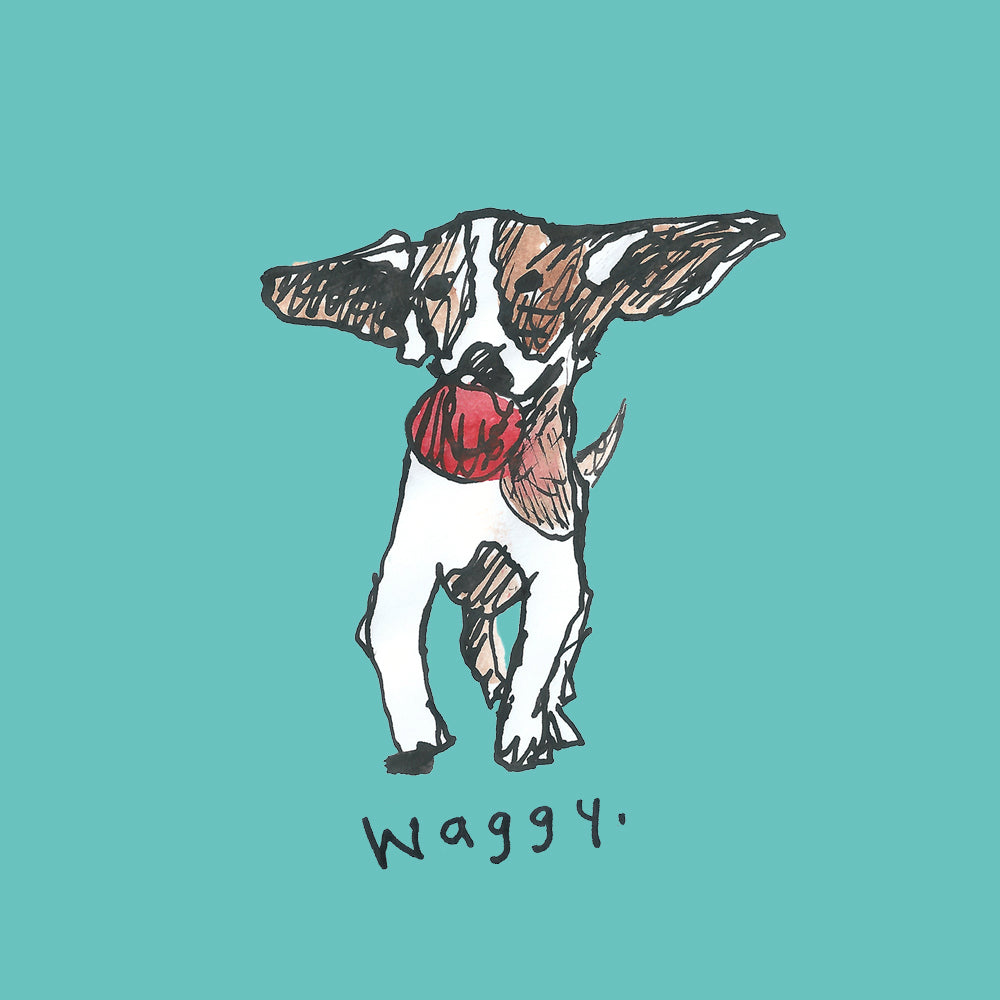 Happy little dog with ball in mouth, Illustration, greetings card